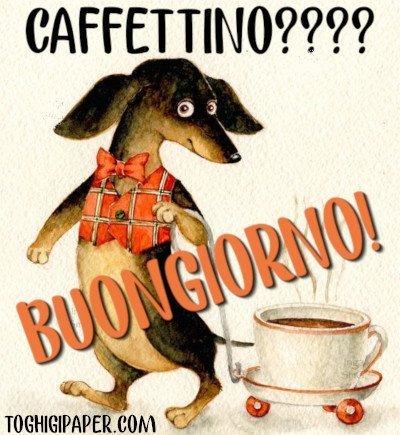 Buongiorno caffè